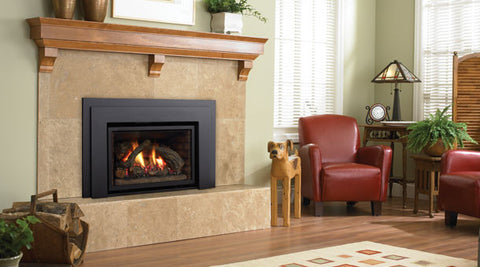 Regency Liberty L390E Gas Fireplace Insert