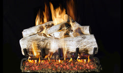 Mountain Birch Vented Gas Logs