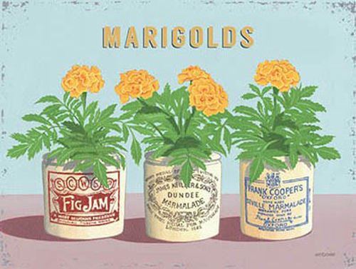 marigolds-vintage-flower-pots-home-garden-kitchen-bathroom-metal-steel-wall-sign
