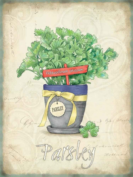 Parsley Herbs Food & Drink Garden Home Kitchen Cooking Metal/Steel Wall Sign