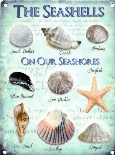 the-seashells-on-our-seashores-sand-dollar-conch-abalone-mussel-starfish-snail-scallop-and-limpet-old-vintage-for-kitchen-bathroom-home-restaurant-or-pub-metal-steel-wall-sign