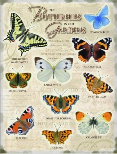 butterflies-in-our-gardens-including-common-blue-large-white-red-admiral-painted-lady-kitchen-shed-cafe-garden-centre-allotment-green-house-metal-steel-wall-sign