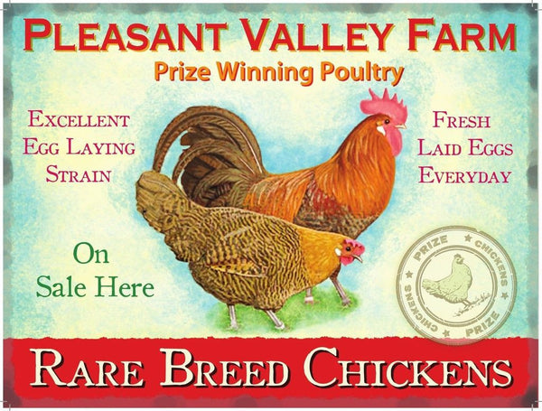 pleasant-valley-farm-rare-breed-chickens-fresh-laid-eggs-breakfast-free-range-cockerel-for-breakfast-bar-kitchen-home-cafe-or-restaurant-animals-metal-steel-wall-sign
