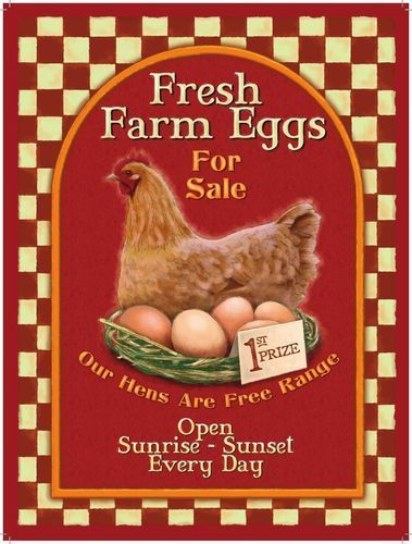 Fresh Farm Eggs. Hen & nest of eggs, Healthy breakfast,    Metal/Steel Wall Sign