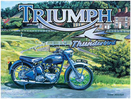 triumph-thunderbird-motor-bike-cycle-british-classic-in-a-countryside-settings-for-house-home-garage-bar-or-pub-metal-steel-wall-sign
