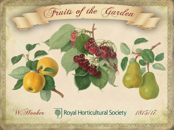 fruits-of-the-garden-royal-horticultural-society-apples-cherry-pears-cherries-metal-steel-wall-sign
