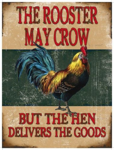 The rooster may crow but the hen delivers the  Metal/Steel Wall Sign