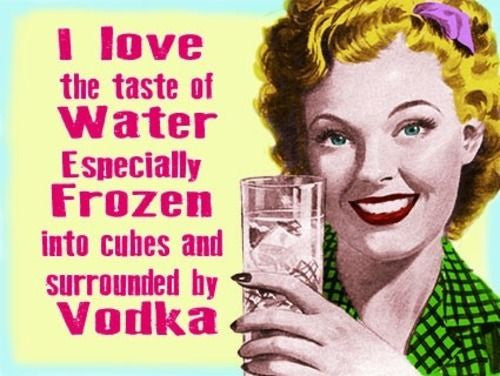 i-love-the-taste-of-water-especially-frozen-into-cubes-and-surrounded-by-vodka-food-and-drink-funny-humour-old-retro-vintage-in-design-metal-steel-wall-sign