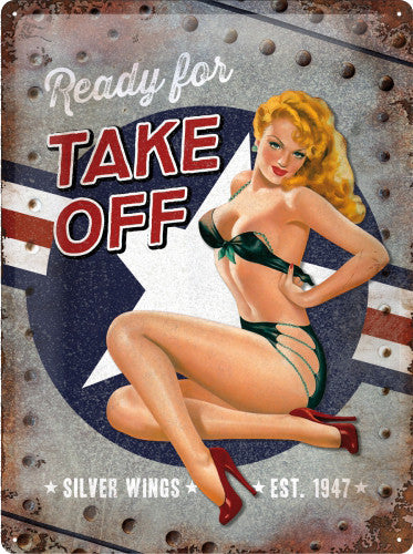 Small Metal Tin Sign Funny Retro Pin-up Girl Home Fluff /& Fold Laundry Service