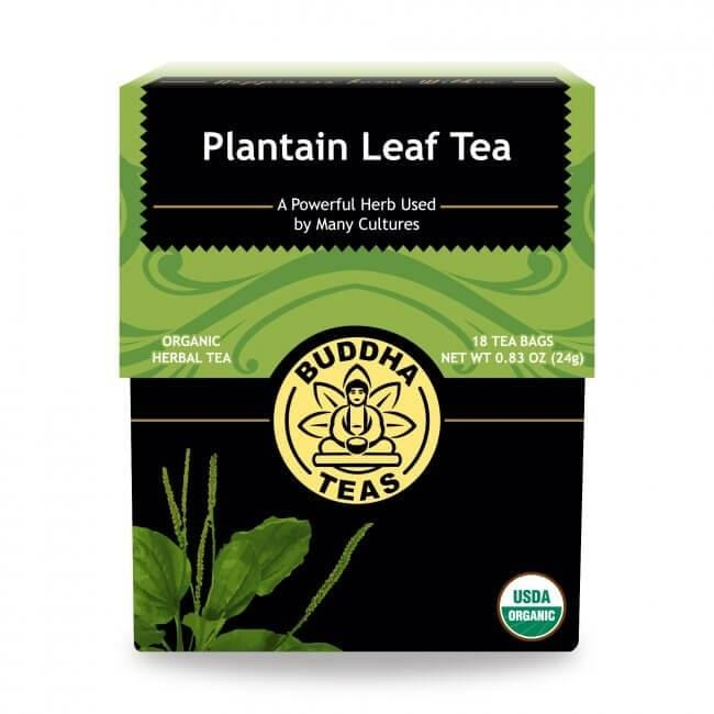 Plantain Leaf Tea - REVIVIFY