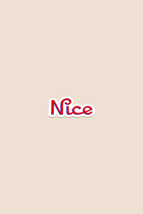 Team Nice Sticker