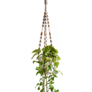 Macrame Plant Hanger ~ Copper Twister Space