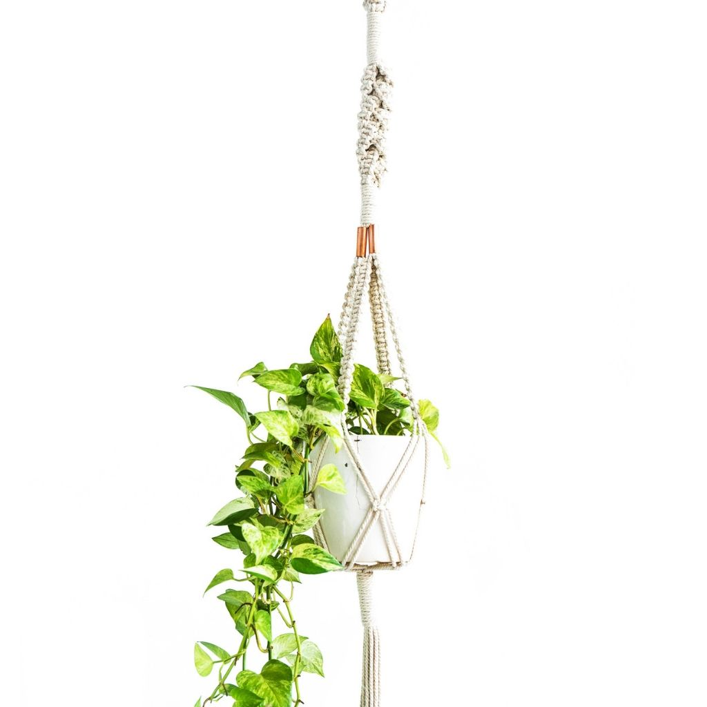 Macrame Plant Hanger ~ Copper Twisted Square