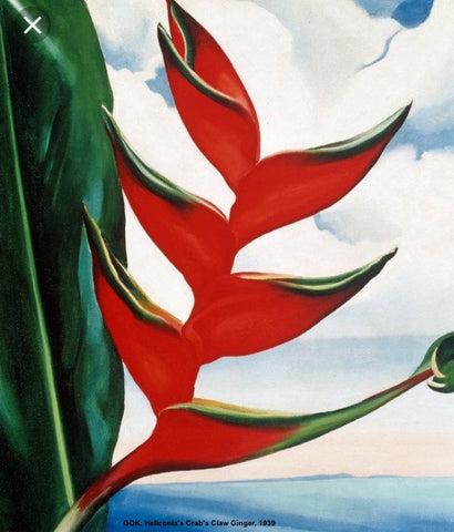 GOK Heliconia's Crab's Claw Ginger, 1936