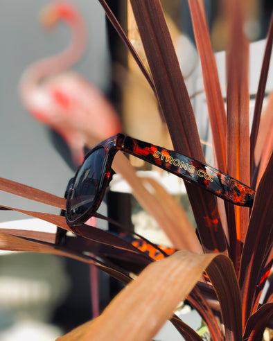 Strong Co // Tortoiseshell Sunglasses