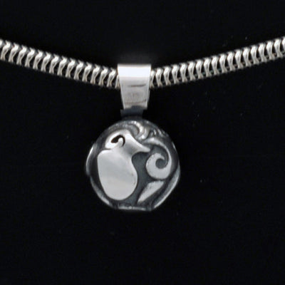 Talisman silver Aquarius horoscope pendant on snake