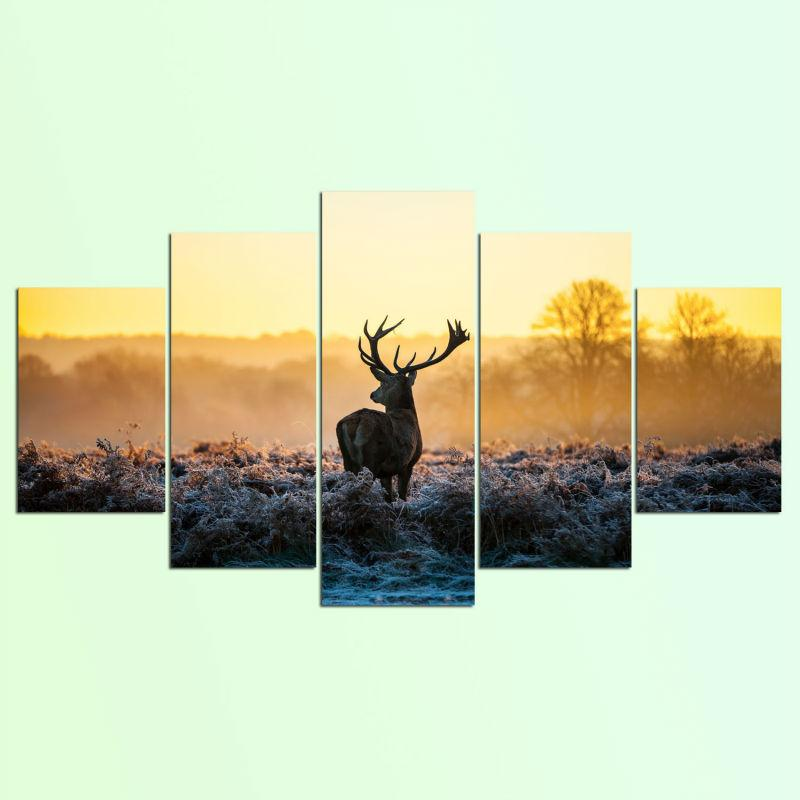 5 Pieces Deer Canvas Prints Wall Art Paintings Sets For Sale – It ...