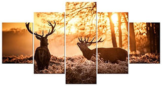 5 Pieces Deer Canvas Wall Art - It Make Your Day