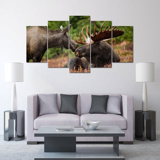 Bull and Cow Moose - It Make Your Day