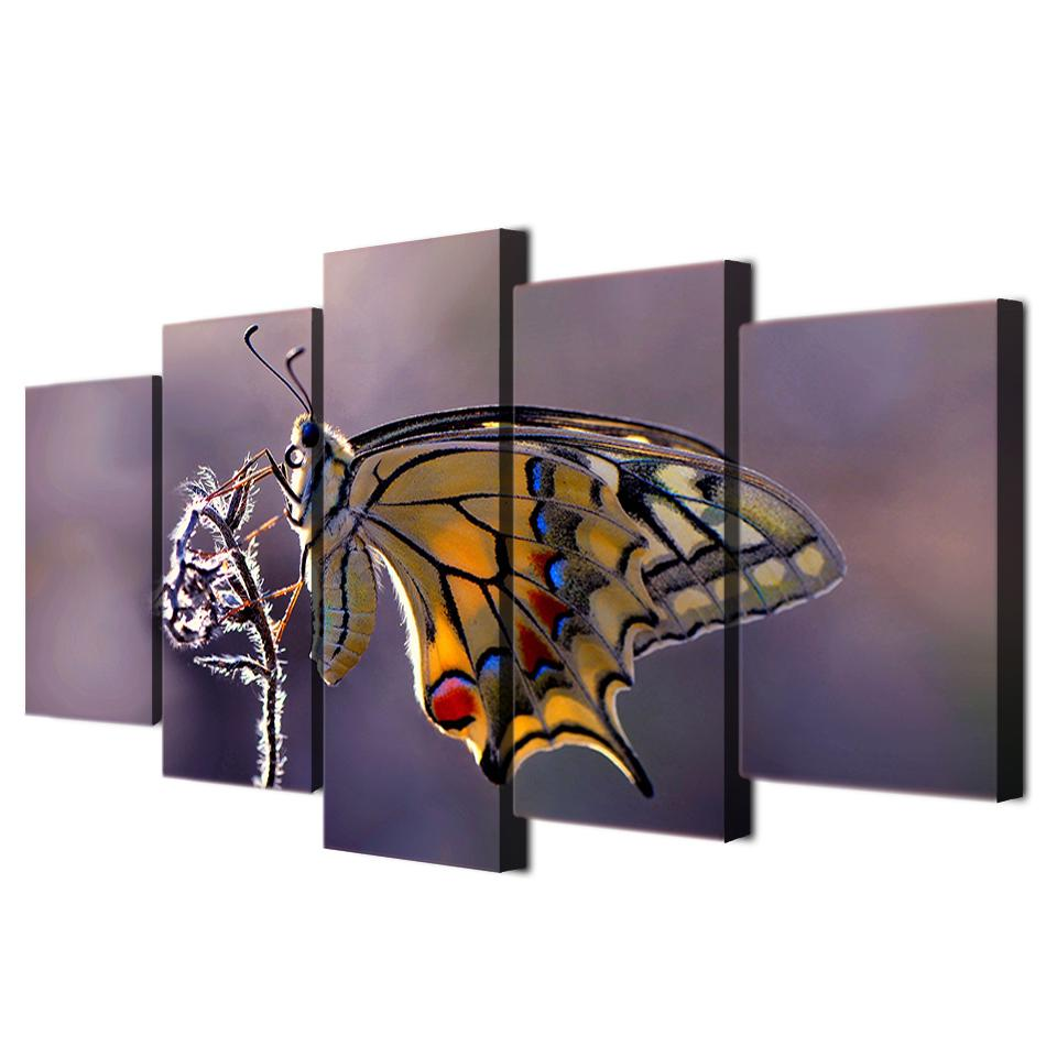 Framed 5 Piece Colorful Butterfly Poster Canvas Wall Art Sets - It Make Your Day
