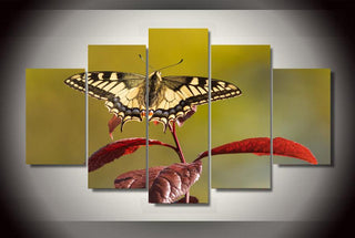 Framed 5 Piece Butterfly On Leaves Canvas Wall Art Sets - It Make Your Day