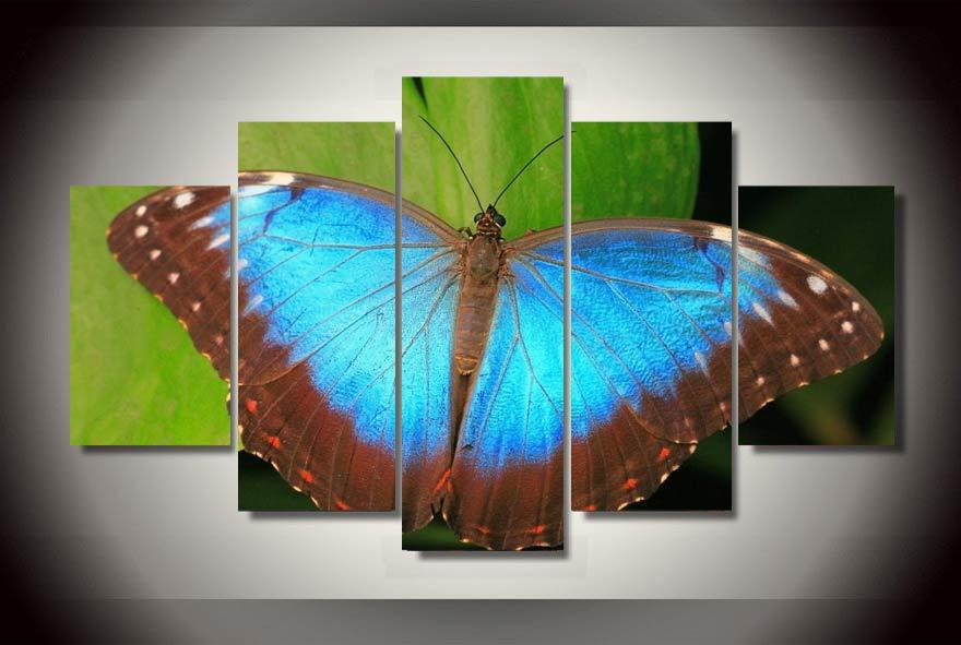 Framed 5 Piece Abstract Colorful Butterfly Canvas Wall Art Sets - It Make Your Day