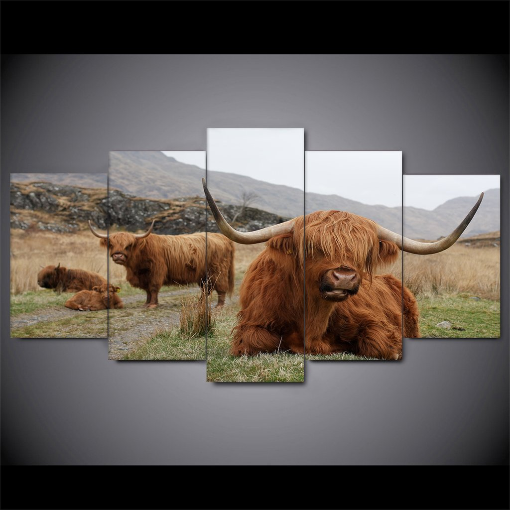 5 Piece Highland Cattle Canvas Paintings - It Make Your Day