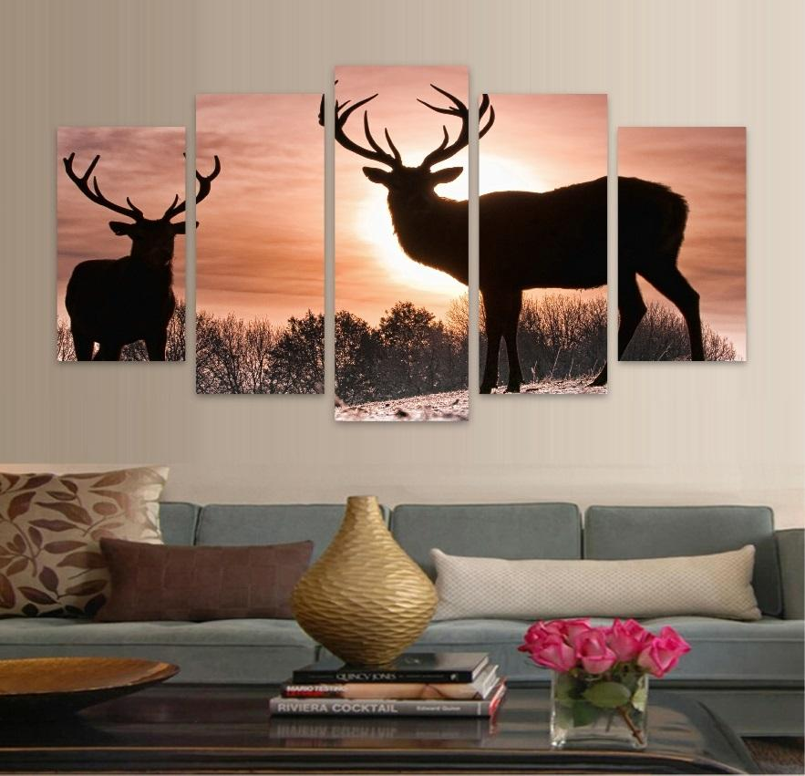 Animal Elk Couple Sunset - It Make Your Day