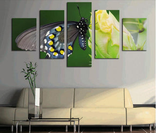 Framed 5 Piece Gray Butterfly On The Flower Canvas Wall Art Sets - It Make Your Day