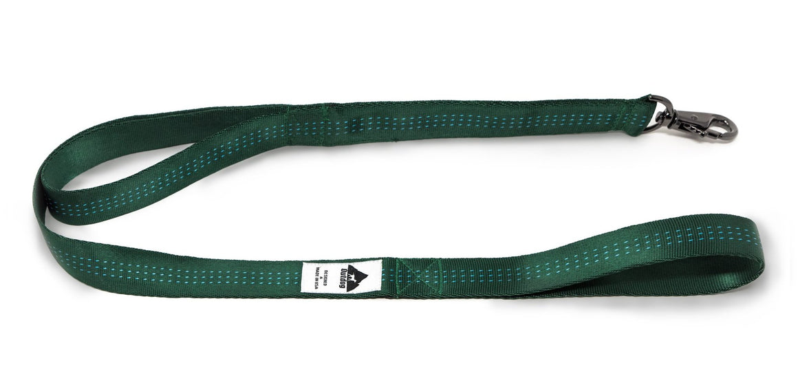 TCS LEASH WITH TRAFFIC HANDLE