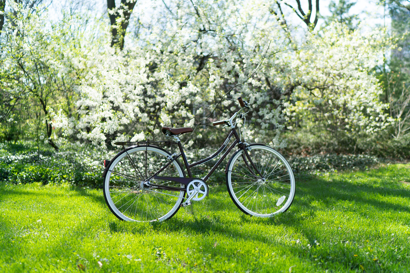 Best Bikes for Casual Riding