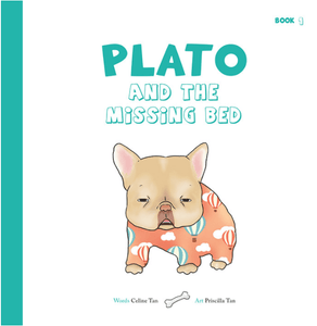 Plato and the Missing Bed
