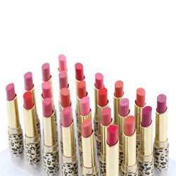24pcs/set New Leopard Pattern Lipstick Waterproof Glide Moisture Protective Lip Stick Cosmetics 12 colors top quality - Deals Blast