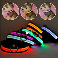 LED Nylon Pet Dog Collar Night Safety Glow Flashing Dog Cat Collar Led Luminous Small Dogs Collars USB Rechargeable - Deals Blast