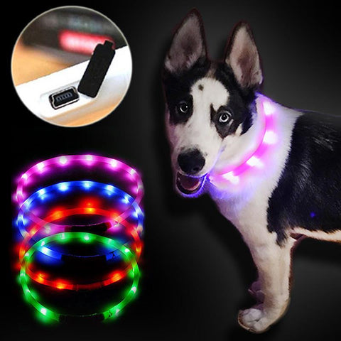 pet collar led lightOutdoor Dog Collars luminous USB charging Cat dog collar Teddy Night Flashing Light Collar
