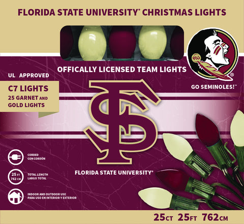 Florida State University Christmas Lights