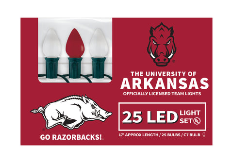 Arkansas LED Lights