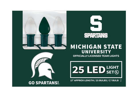 Michigan State LED Lights