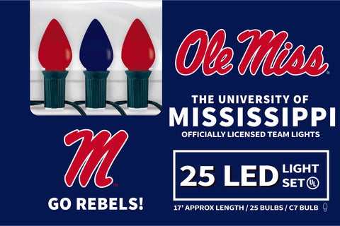 Mississippi LED Lights