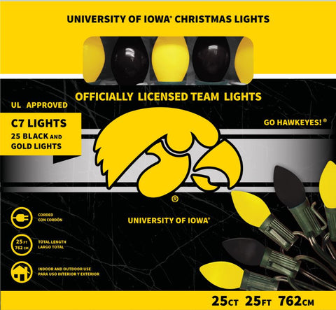University of Iowa Christmas Lights