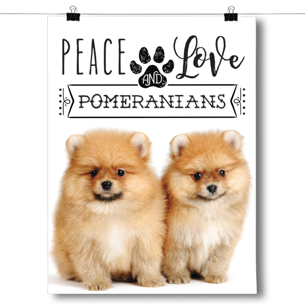 Peace Love and Pomeranians - Real Life