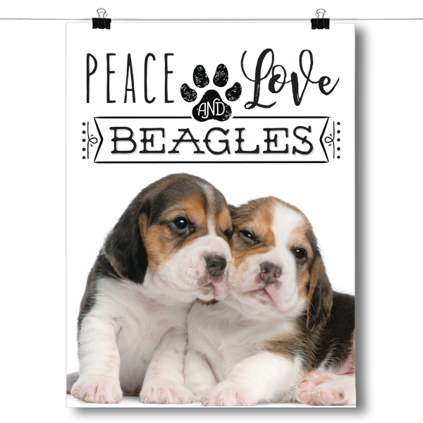 Peace Love and Beagles - Real Life
