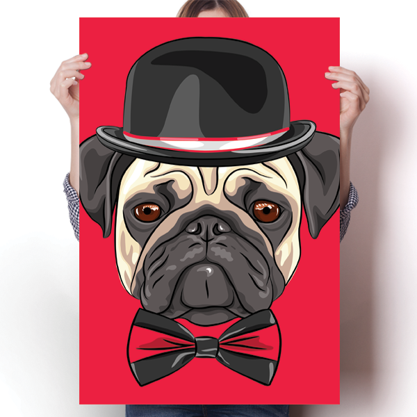 Mr. Pug Cool Dog