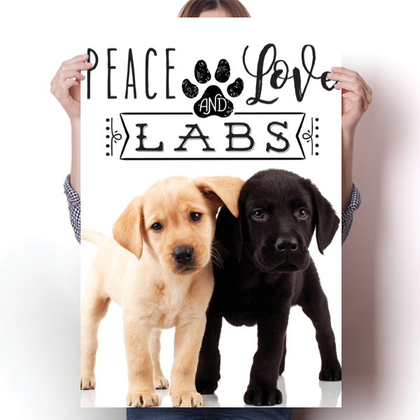 Peace Love and Labs - Real Life