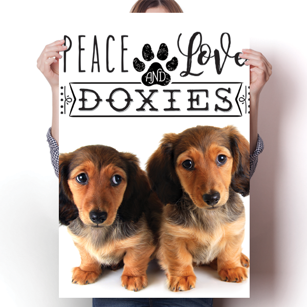 Peace Love and Doxies - Real Life