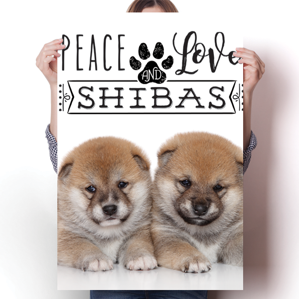 Peace Love and Shibas - Real Life