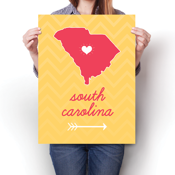 South Carolina State Chevron Pattern