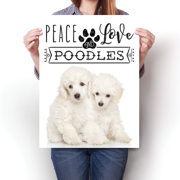 Peace Love and Poodles - Real Life