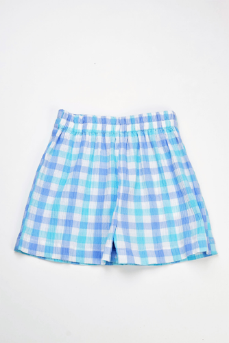 Aqua/Blue Check Shorts