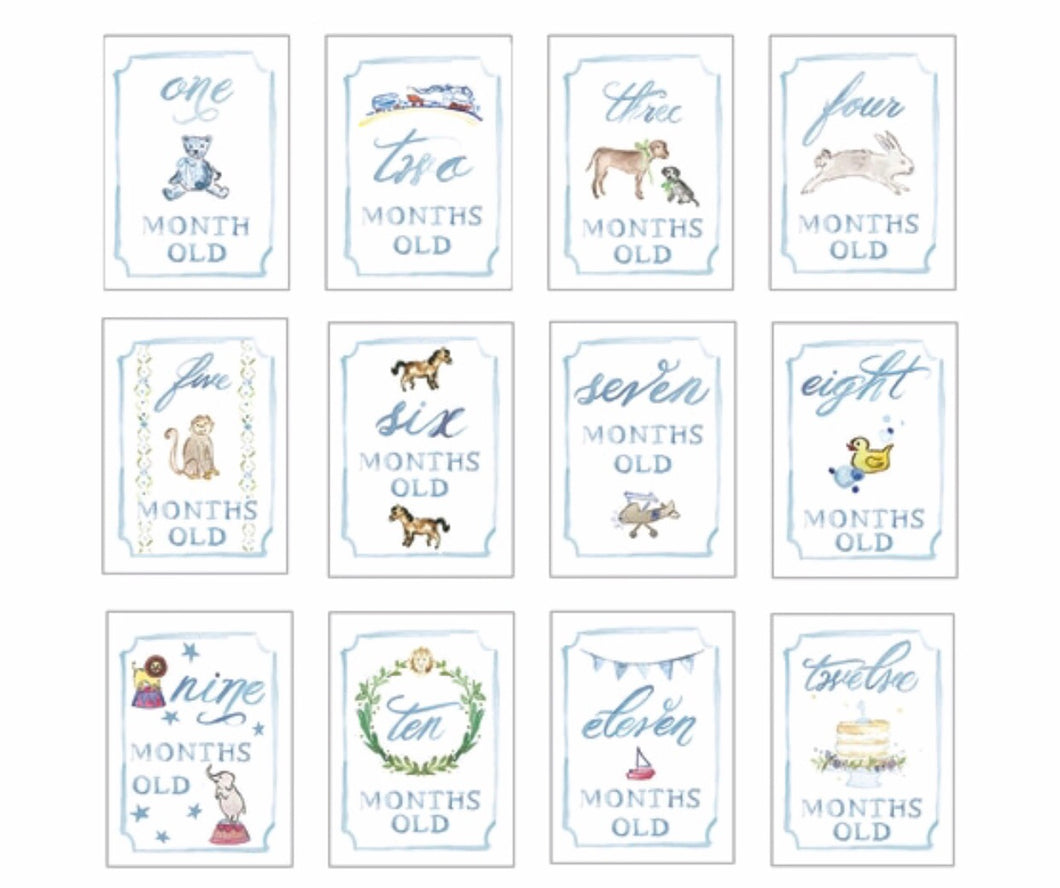 Month by Month Card Set - Blue